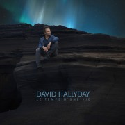 david_hallyday_cover